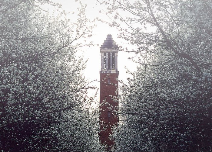 University Of Alabama Greeting Card featuring the photograph Denny Chimes Foggy Blossoms by Ben Shields