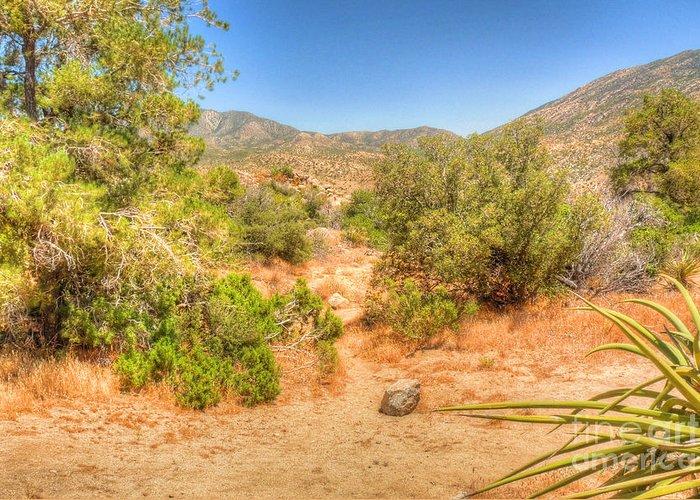 California Greeting Card featuring the photograph Desert Hardscape by Deborah Smolinske