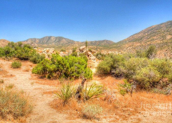 California Greeting Card featuring the photograph Desert Panorama by Deborah Smolinske