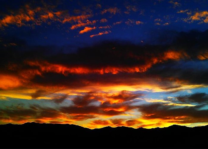 Nature Greeting Card featuring the photograph Desert Winter Sunset by Chris Tarpening