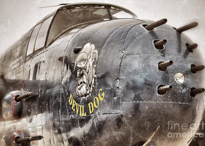 Planes Greeting Card featuring the photograph Devil Dog by AK Photography