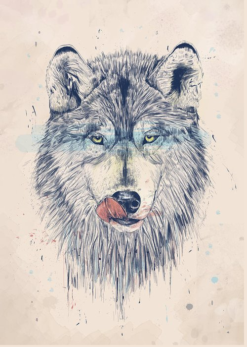 Wolf Drawings Greeting Cards