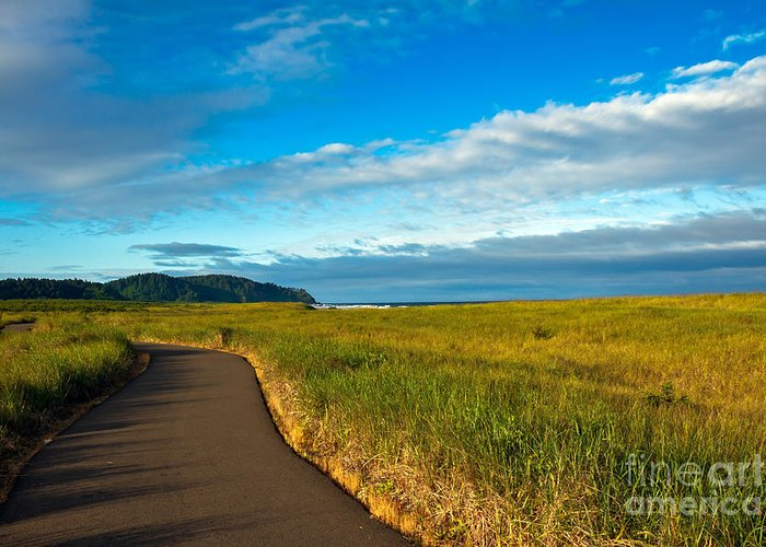 Pacific Ocean Greeting Card featuring the photograph Discovery Trail by Robert Bales
