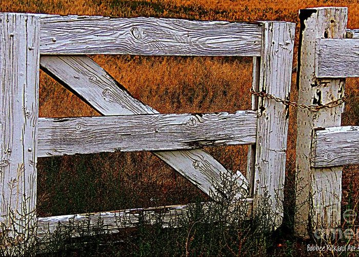Gates Greeting Card featuring the photograph Do Not Enter by Bobbee Rickard
