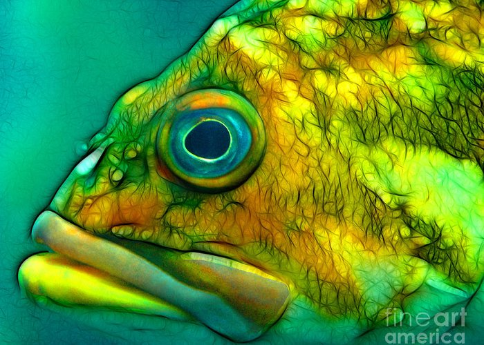 Fish Greeting Card featuring the mixed media Do You Truly See Me by Francine Dufour Jones