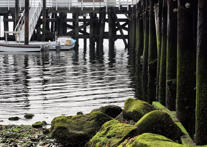 Dockside Greeting Card featuring the photograph Dockside 2 by JC Findley