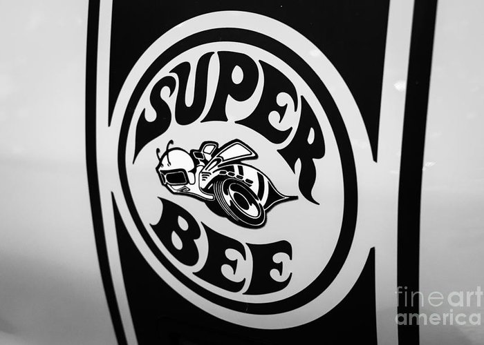 Superbee Greeting Cards