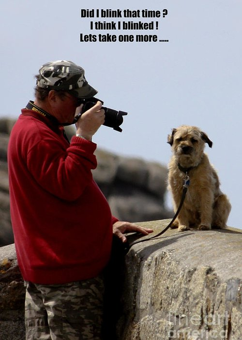 Photographer Greeting Card featuring the photograph Dog Being Photographed by Terri Waters