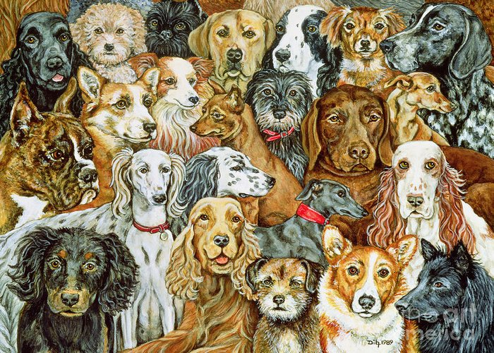 Dog Spread Greeting Card featuring the painting Dog Spread by Ditz