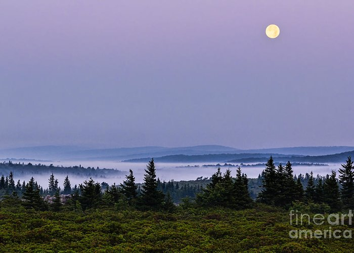 Dolly Sods Greeting Card featuring the photograph Dolly Sods Moonset by Eric Gaston
