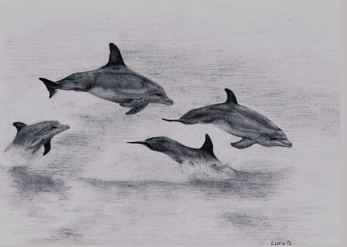 Dolphin Greeting Card featuring the drawing Dolphins by Lucy D