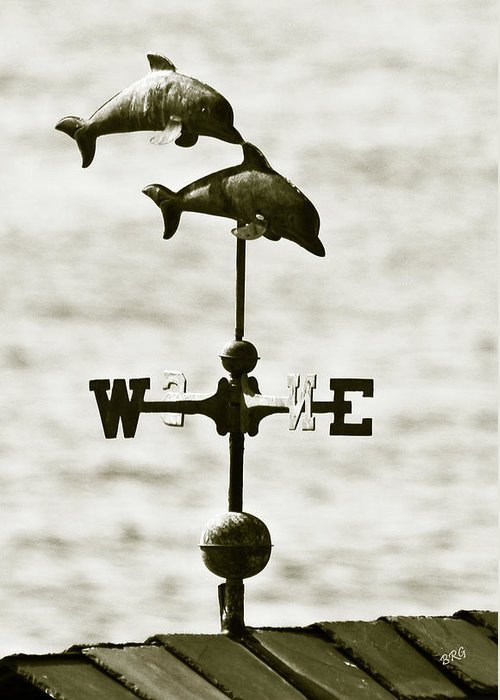 Dolphins Greeting Card featuring the photograph Dolphins Weathervane In Sepia by Ben and Raisa Gertsberg
