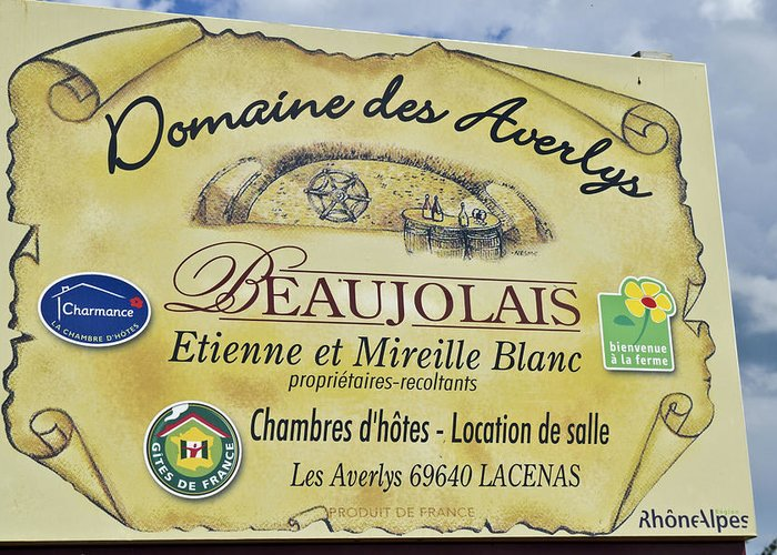 Beaujolais Greeting Card featuring the photograph Domaine Des Averlys by Allen Sheffield