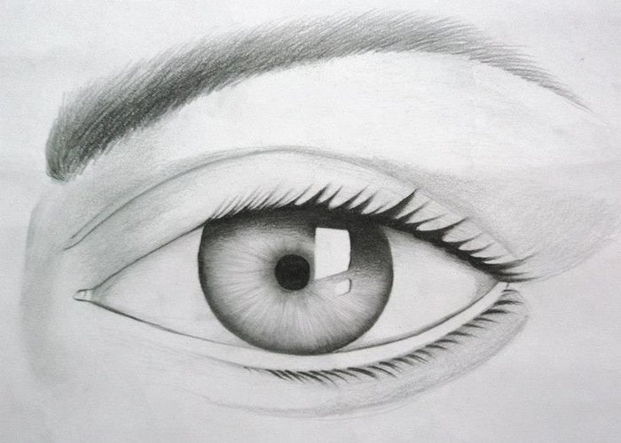 Donate Eyes Greeting Card featuring the drawing Donate Your Eyes by Tanmay Singh