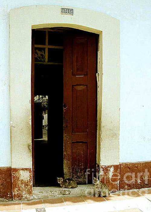 Cats Greeting Card featuring the photograph Dos Puertas Con Dos Gatos by Kathy McClure