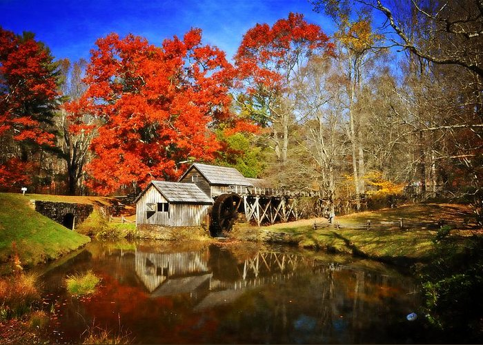 Fall Greeting Card featuring the photograph Down By The Old Mill Stream by Lynn Bauer