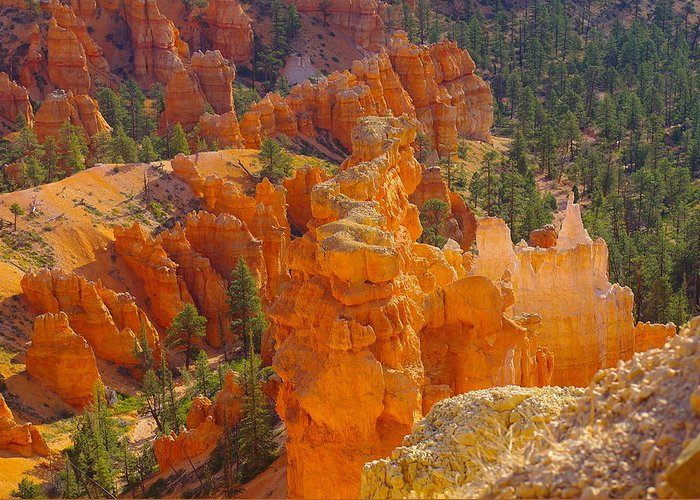 Orange Greeting Card featuring the photograph Down Into Bryce by Jeff Swan