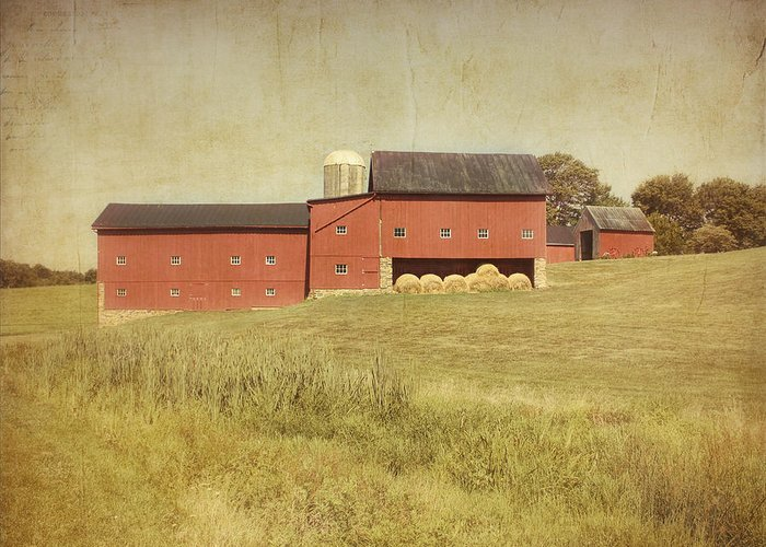 Farm Greeting Card featuring the photograph Down On The Farm by Kim Hojnacki