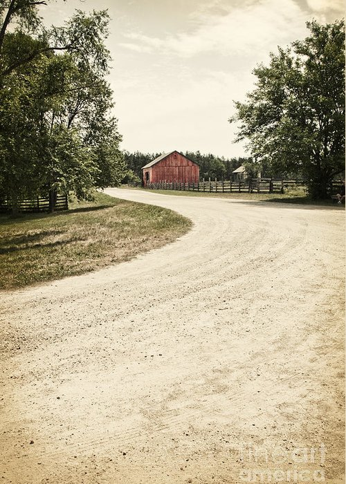 Old; Farm; Barn; Rural; Landscape; Outside; Outdoors; Roof; Fence; Barrier; Pasture; Field; Country; Countryside; Red; Painted; Wood; Wooden; Weeds; Grasses; Trees; Summer; Leaves; Road; Drive; Driveway; Dirt; Street Greeting Card featuring the photograph Down The Road by Margie Hurwich