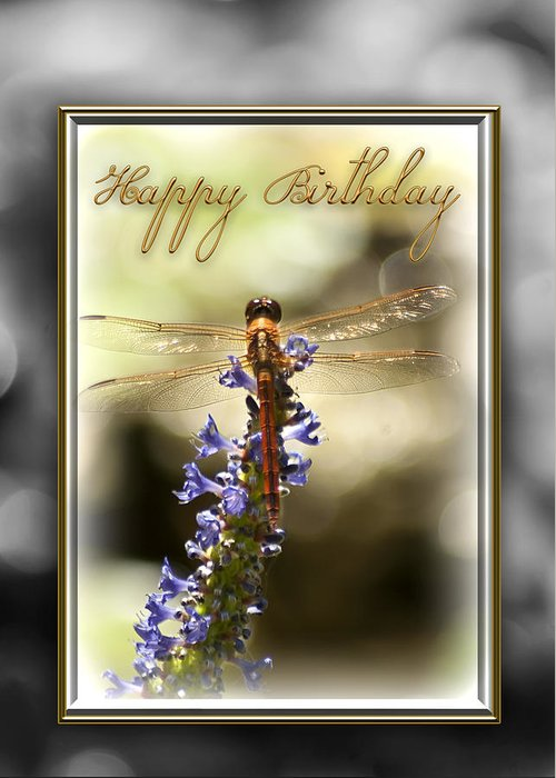 Dragonflies Greeting Card featuring the photograph Dragonfly Birthday Card by Carolyn Marshall