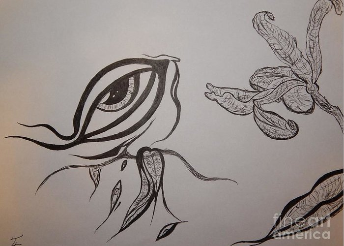 Drained Greeting Card featuring the drawing Drained By The Bloom by Thommy McCorkle