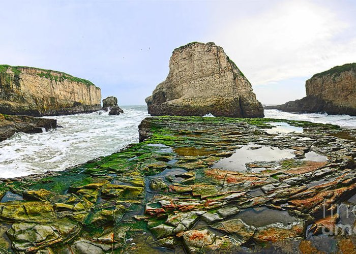 Shark Fin Cove Greeting Card featuring the photograph Dramatic Panoramic View Of Shark Fin Cove by Jamie Pham
