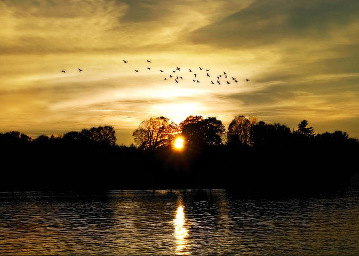 Fall Greeting Card featuring the photograph Dream Of A Sunset by Mary Lane