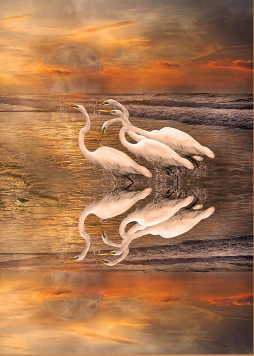 White Greeting Card featuring the digital art Dreaming Of Egrets By The Sea Reflection by Betsy Knapp