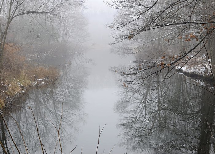 Fog Greeting Card featuring the photograph Dreamlike by Luke Moore