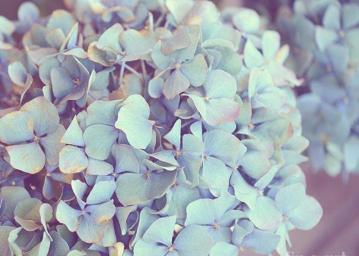 Hydrangea Greeting Card featuring the photograph Dreamy Image Of Hydrangea Flower by Aleksandar Mijatovic