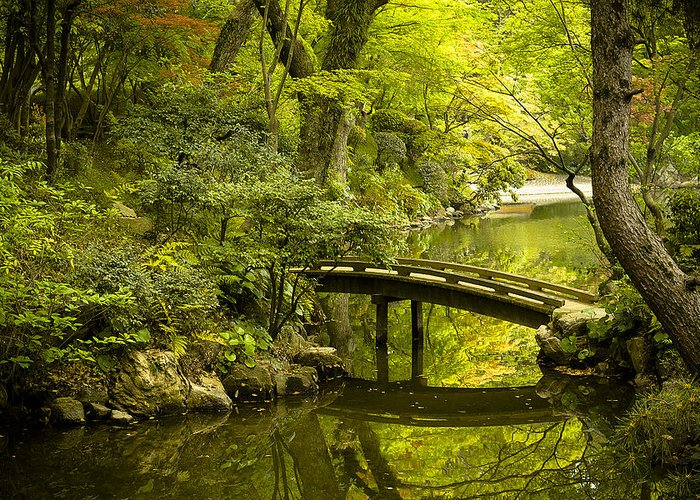Japan Greeting Card featuring the photograph Dreamy Japanese Garden by Sebastian Musial