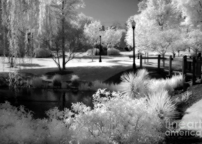 Infrared Art Prints Greeting Card featuring the photograph Dreamy Surreal Black White Infrared Landscape by Kathy Fornal