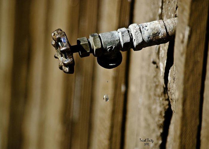 Faucet Greeting Card featuring the photograph Drip...drip...drip...drip by Trish Tritz