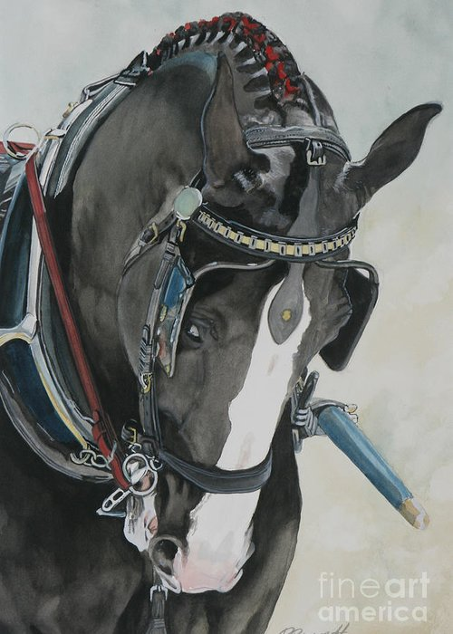 Carriage Driving Greeting Cards