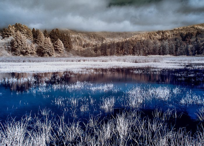 Infrared Greeting Card featuring the photograph Dry Lagoon Blues by Greg Nyquist