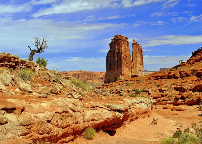 Arches National Park Greeting Card featuring the photograph Dsc_3690.jpg by Marty Koch