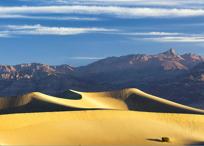 Death Valley Greeting Card featuring the photograph Dune Light by Patrick Downey