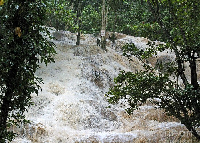 Jamaica Greeting Card featuring the photograph Dunns River Falls 2 by Nancy L Marshall