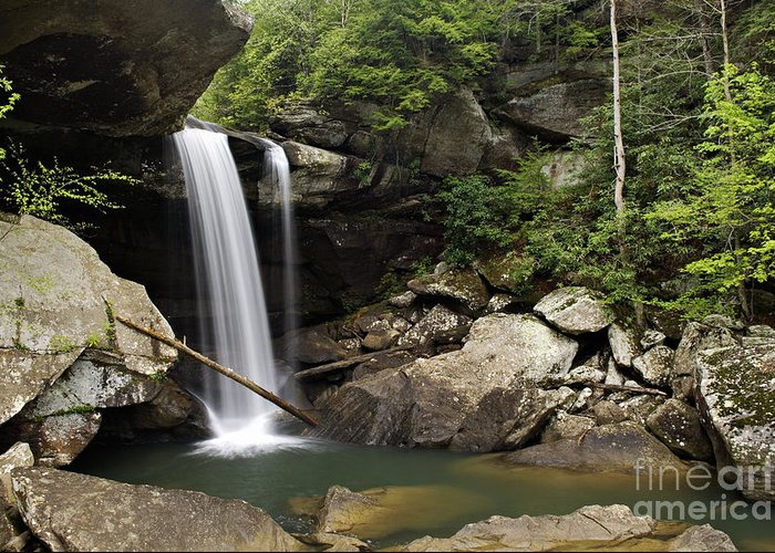 Eagle Greeting Card featuring the photograph Eagle Falls - D002751 by Daniel Dempster