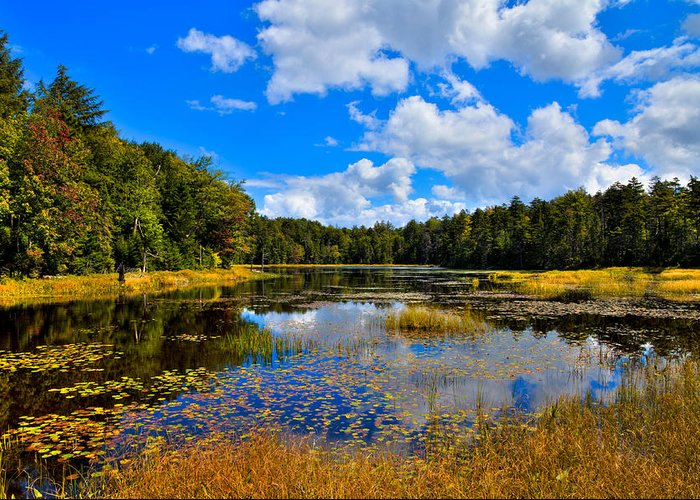 Adirondack's Greeting Card featuring the photograph Early Autumn At Fly Pond - Old Forge New York by David Patterson