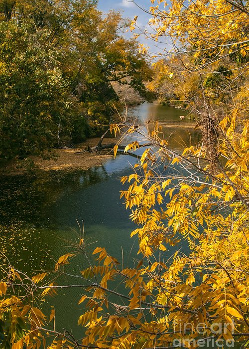 Nature Greeting Card featuring the photograph Early Fall On The Navasota by Robert Frederick