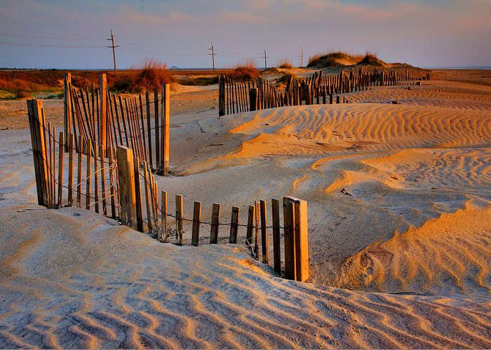 Sunrise Greeting Card featuring the photograph Early Morning On The Dunes I by Steven Ainsworth