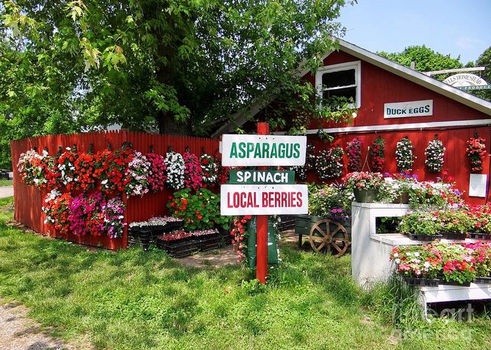 Farmstand Greeting Card featuring the photograph East End Farmstand by Ed Weidman