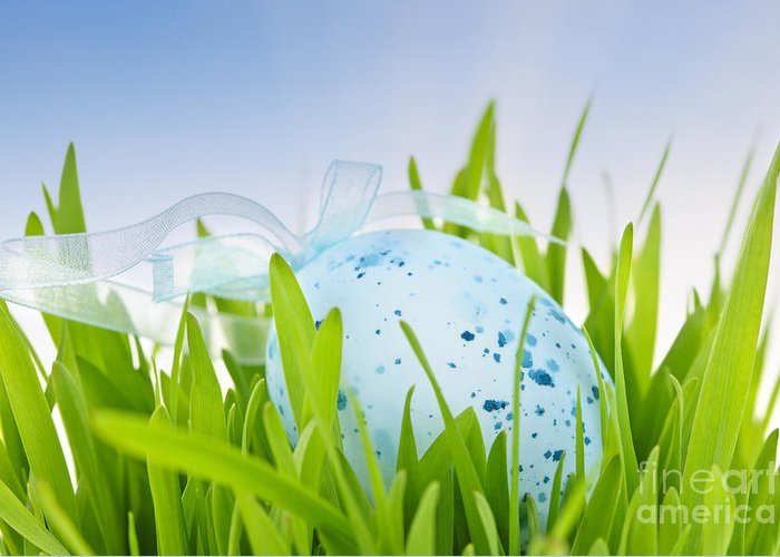 Easter Greeting Card featuring the photograph Easter Egg In Grass by Elena Elisseeva