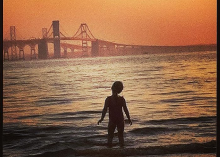 Chesapeake Bay Bridge Greeting Card featuring the photograph Eastern Shore Water Baby by Crystal Morgan