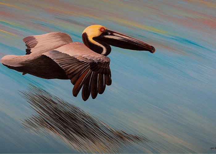 Glassy Wing Paintings Greeting Cards