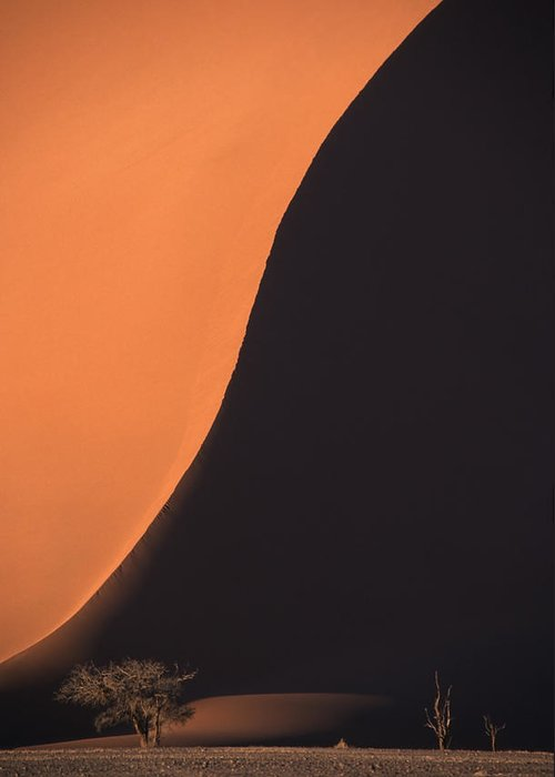 Tranquility Greeting Card featuring the photograph Edge Of Giant Red Sand Dune by Rosemary Calvert