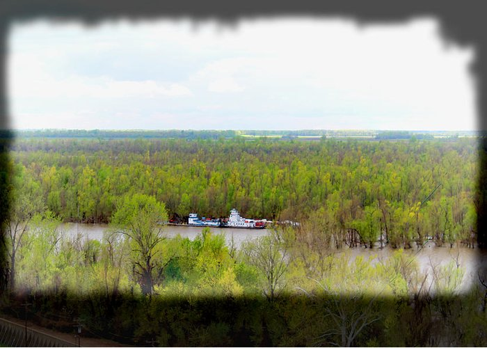 Trees Greeting Card featuring the photograph Edge Of Mississippi River by Bonnie Willis