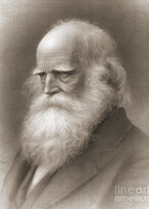 William Cullen Bryant Greeting Cards