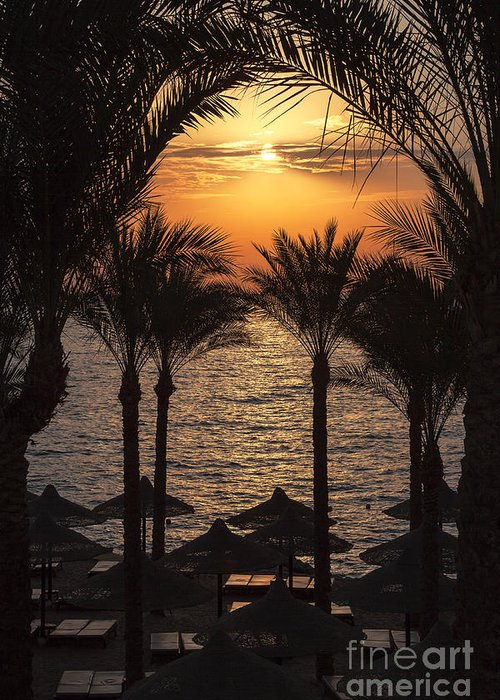 Background Greeting Card featuring the photograph Egypt Sunrise by Jane Rix